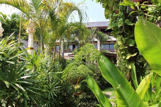 Samui Jasmine Resort : The main buiding