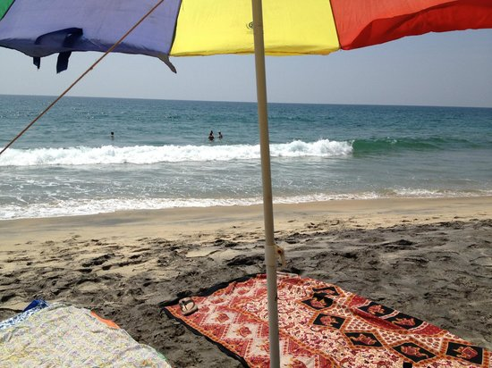 Odayam Beach vid Palm Tree Heritage