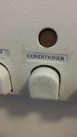 Brisbane Airport Inn: Hair in shower