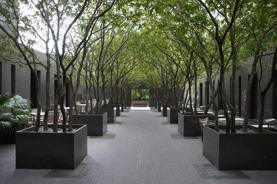 minimalist small garden ideas
