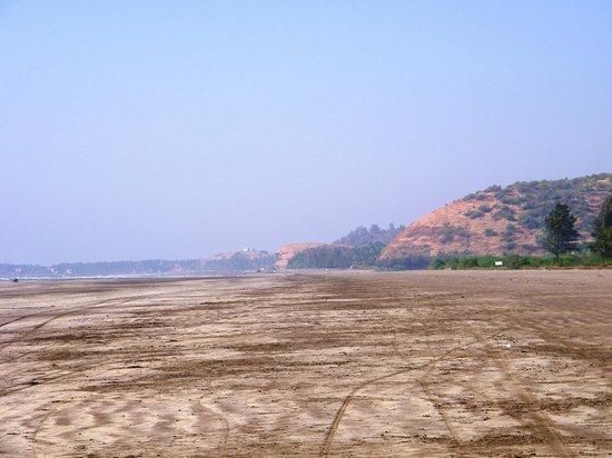 Lotus Beach Resort, Murud-Dapoli : Murud Beach