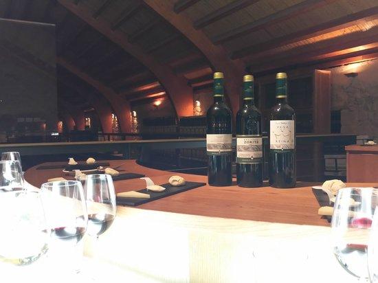 Hacienda Zorita Wine Hotel & Spa : Bodega