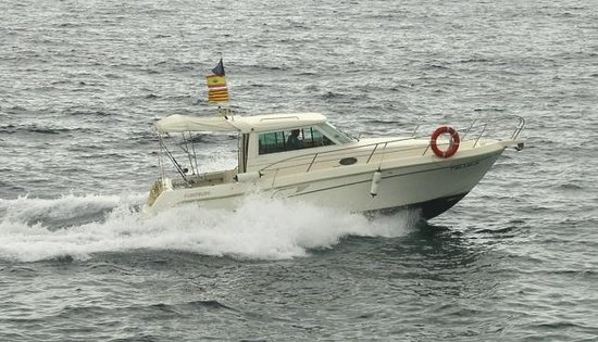 Sport Fishing Barcelona