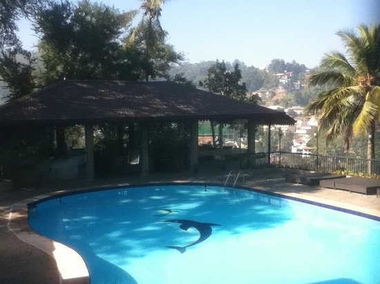 Hotel Thilanka: The garden and pool and bar area.