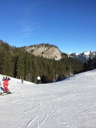 G'sund & Natur Hotel DIE WASNERIN: up on the slope