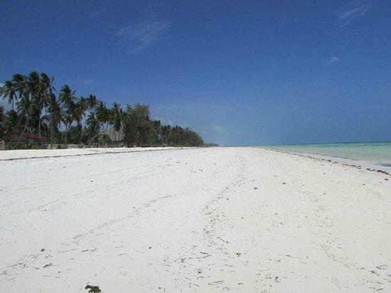 Blu Marlin Village: Spiaggia Infinite