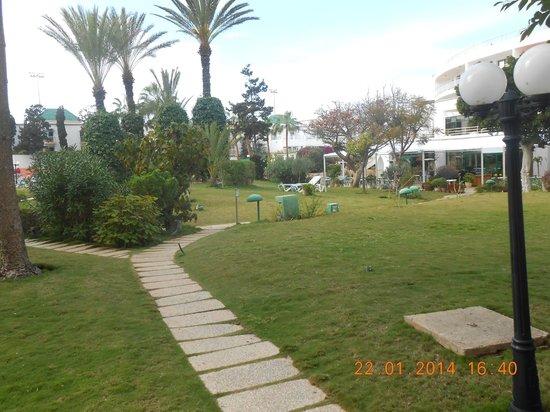 Hôtel Agadir Beach Club : partie de jardin