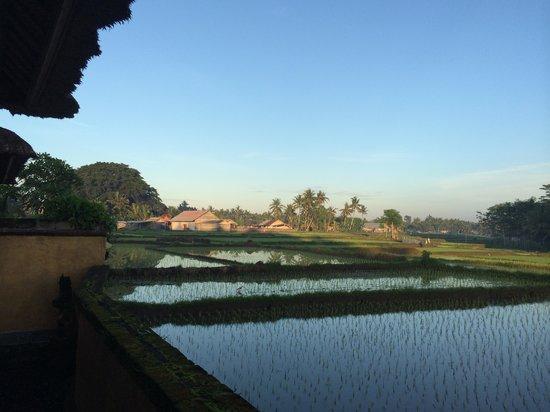 Mandala Desa : En dan het uitzicht !