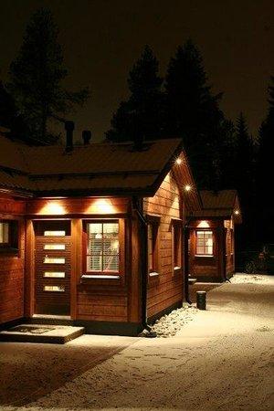 Vuokatinmaa Holiday Apartments: Outside view