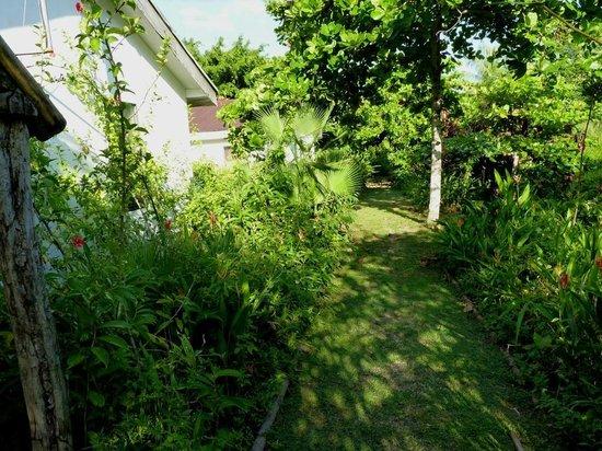 Orchid Garden Eco-Village Belize: Untrammelled nature