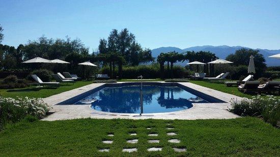 Piscine picture of patios de cafayate wine hotel for Piscine wine
