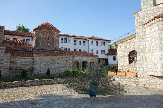 Monastery of Saint Naum : Sveti Naum Monastery