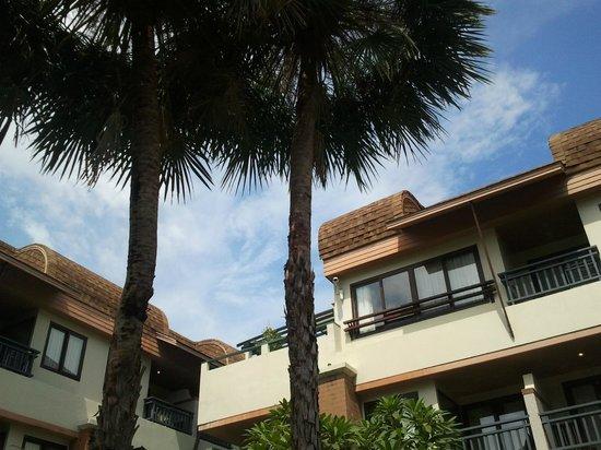 P. P. Palm Tree Resort: pp paml tree