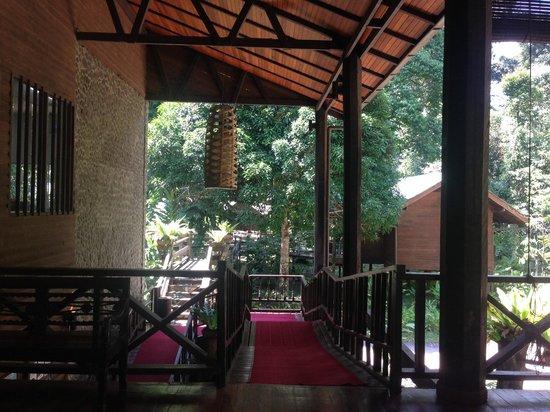Borneo Rainforest Lodge: 走下去就是清洗區域跟接待處