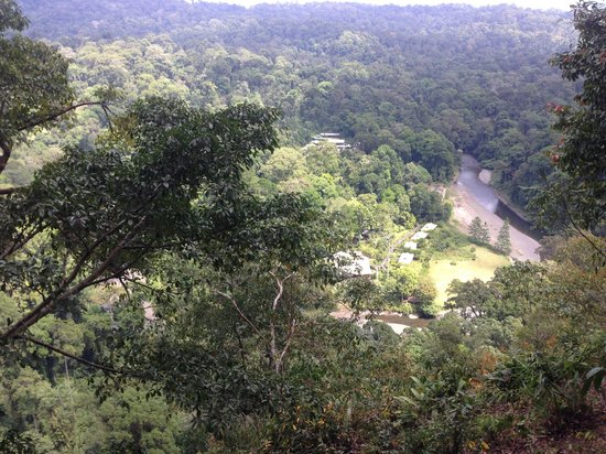 Borneo Rainforest Lodge: hiking to the top of the hill