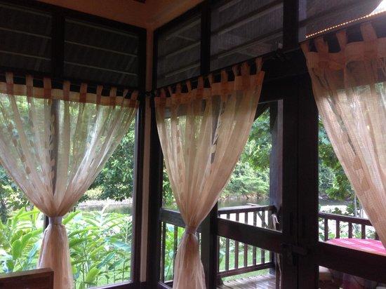 Borneo Rainforest Lodge: 兩面窗