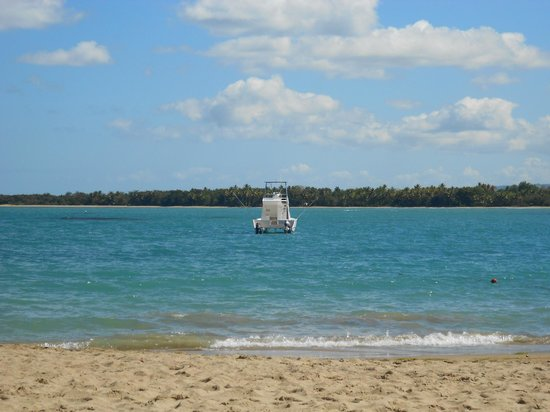 BlueBay Villas Doradas Adults Only: Beach View