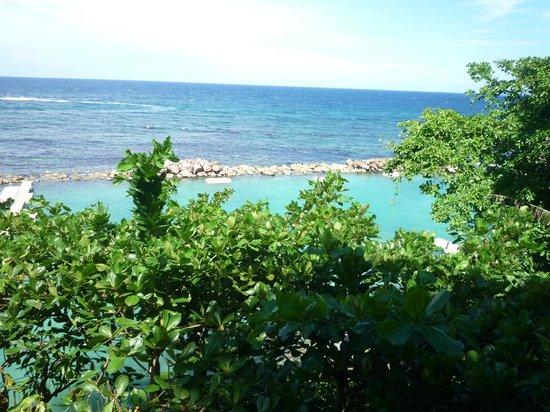Dolphin Cove: paisaje