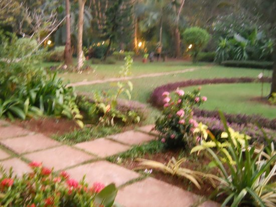 Jasminn by Mango Hotels : Garden from our room