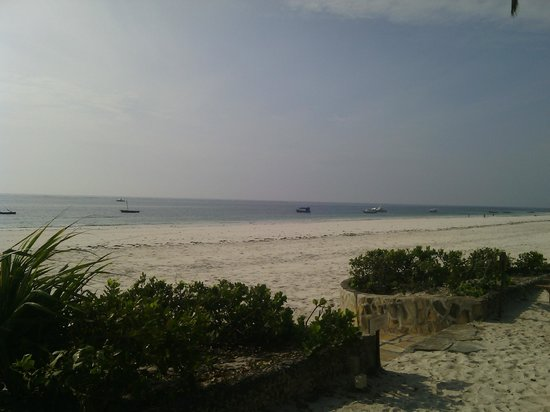Ocean Village Club: Beach front