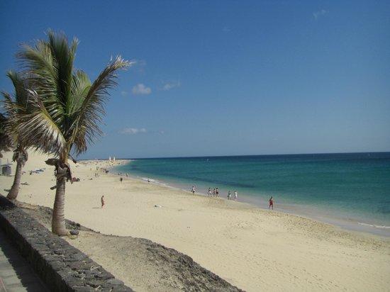 IFA Altamarena Hotel : Sandstrand ist kilometerlang