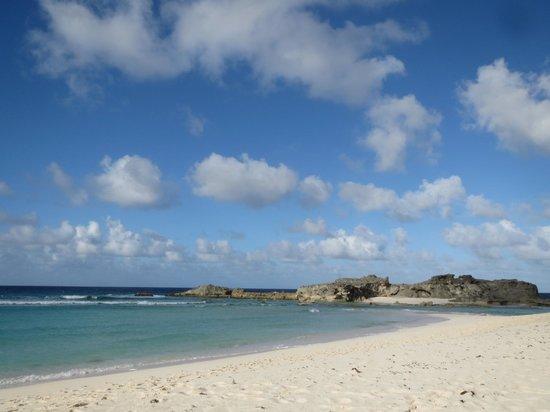 Blue Horizon Resort : Mudjin beach