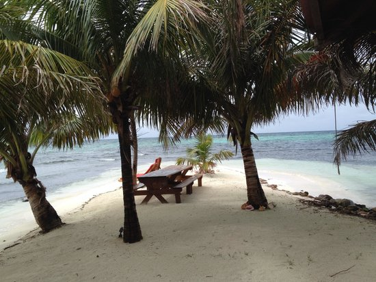 Hatchet Caye Resort : View from the dining room