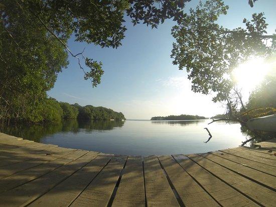 Las Palmeras Eco-Hotel : Laguna encantada