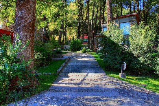 Calle interna Altos del Alma
