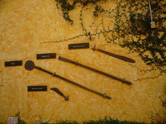 Destilería La Rojeña de José Cuervo: ferramentas utilizadas para a extração do bulbo