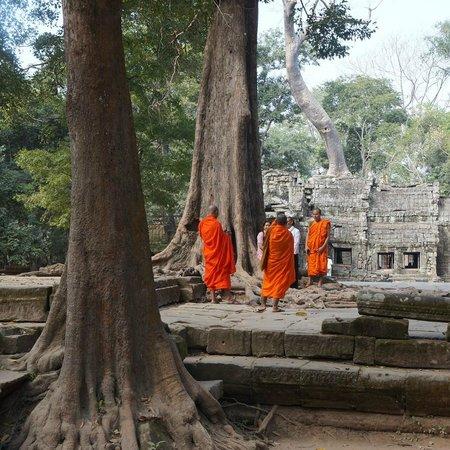 Angkor Thom  |  Angkor Wat,