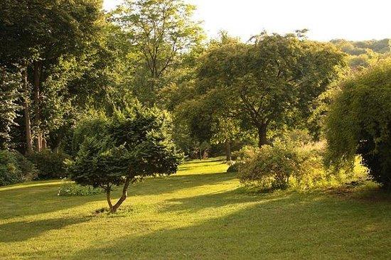L'Aulnaie B&B : In the garden