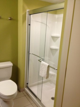 Home2 Suites by Hilton Nashville Vanderbilt: Bathroom