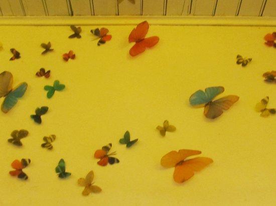 Moscato Cafe: Mariposas en las paredes