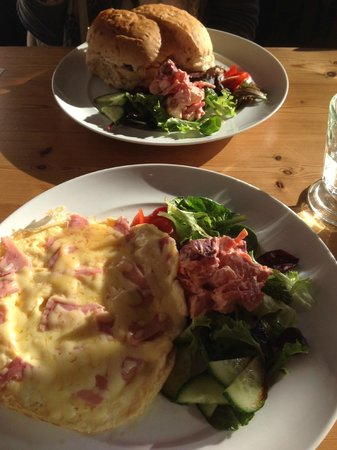 Deena B.: Omelette and Sandwich heaven