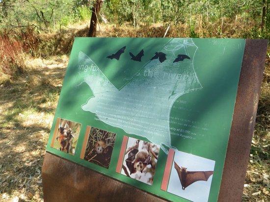 Yarra Bend Park: explanatory board