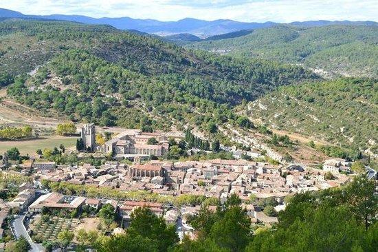 Holidays in Lagrasse : View of Lagrasse village.