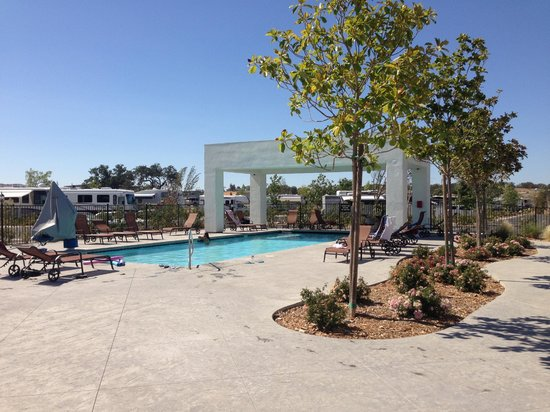 Vines RV Resort : Pool for adult