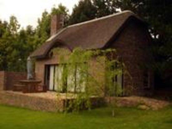 A'Volonte Lodge: GECKO LODGE