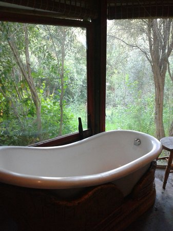 Rocky Road Backpackers: the cleopatra bath with a view!