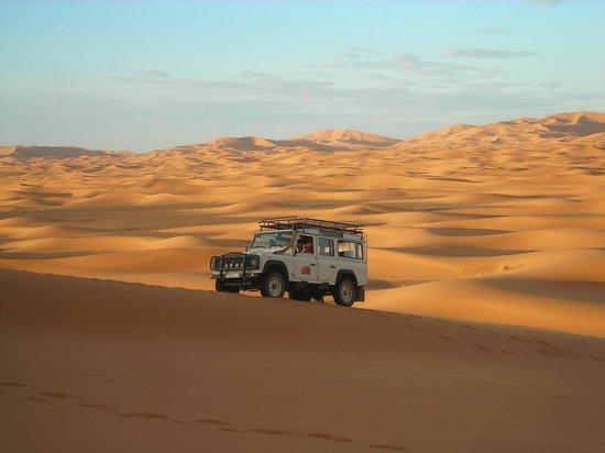 IndiGo Safari Morocco - Private Day Tours: desert sahara tours