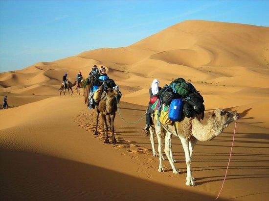IndiGo Safari Morocco - Private Day Tours: day tour to merzouga erg chebbi