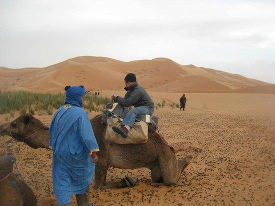 IndiGo Safari Morocco - Private Day Tours: desert camel trek tours