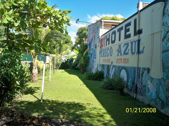 Hotel Perico Azul: small side yard to hang your wet clothes.