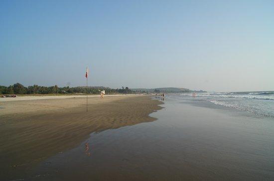 Mandrem Beach: Потрясающий простор