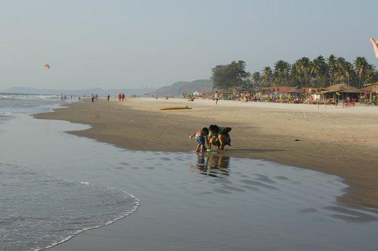 Mandrem Beach: Относительно немноголюдно