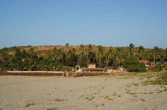 Mandrem Beach: Дорога к пляжу через мостик