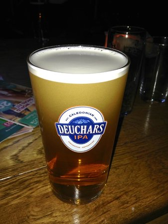 The Bear's Paw : One of the daily IPA's