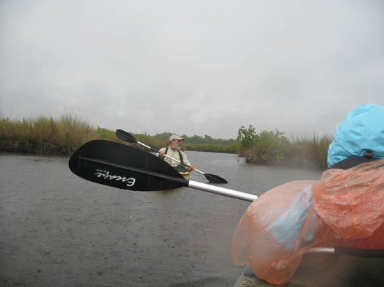 Everglades Area Tours: water below AND above us ;-)