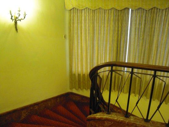 Hotel Napoleon : Gradinata3